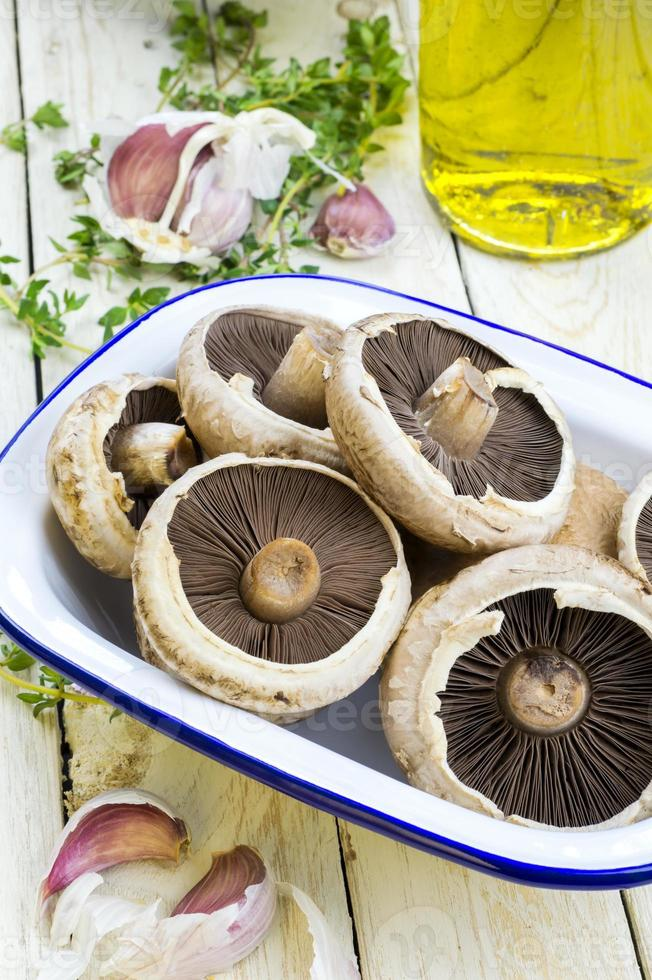 champignons plats photo