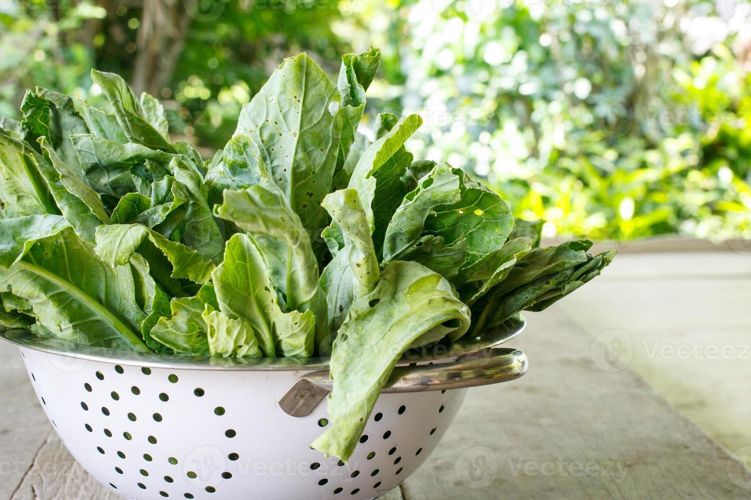 légume de chou frisé (brocoli chinois) photo
