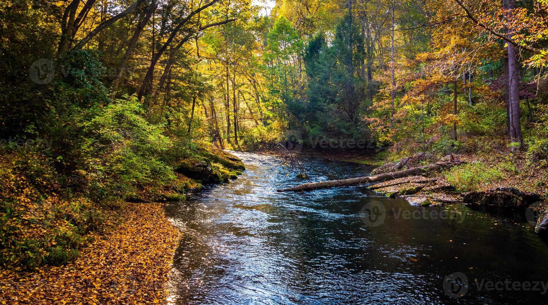 Couleur au début de l'automne le long de la rivière à poudre dans les chutes de poudre à canon photo