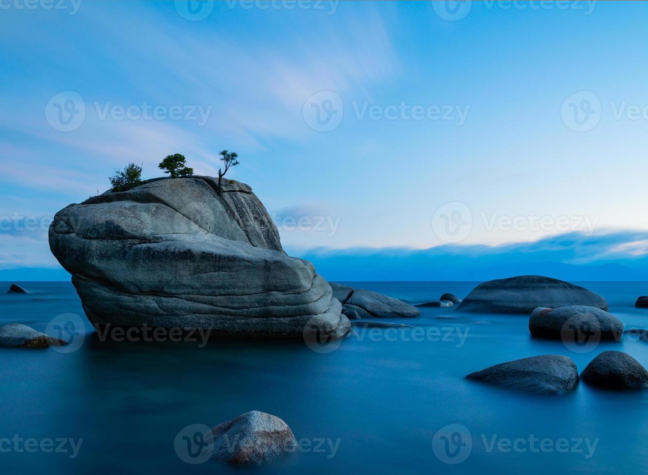 bonsaï rock photo