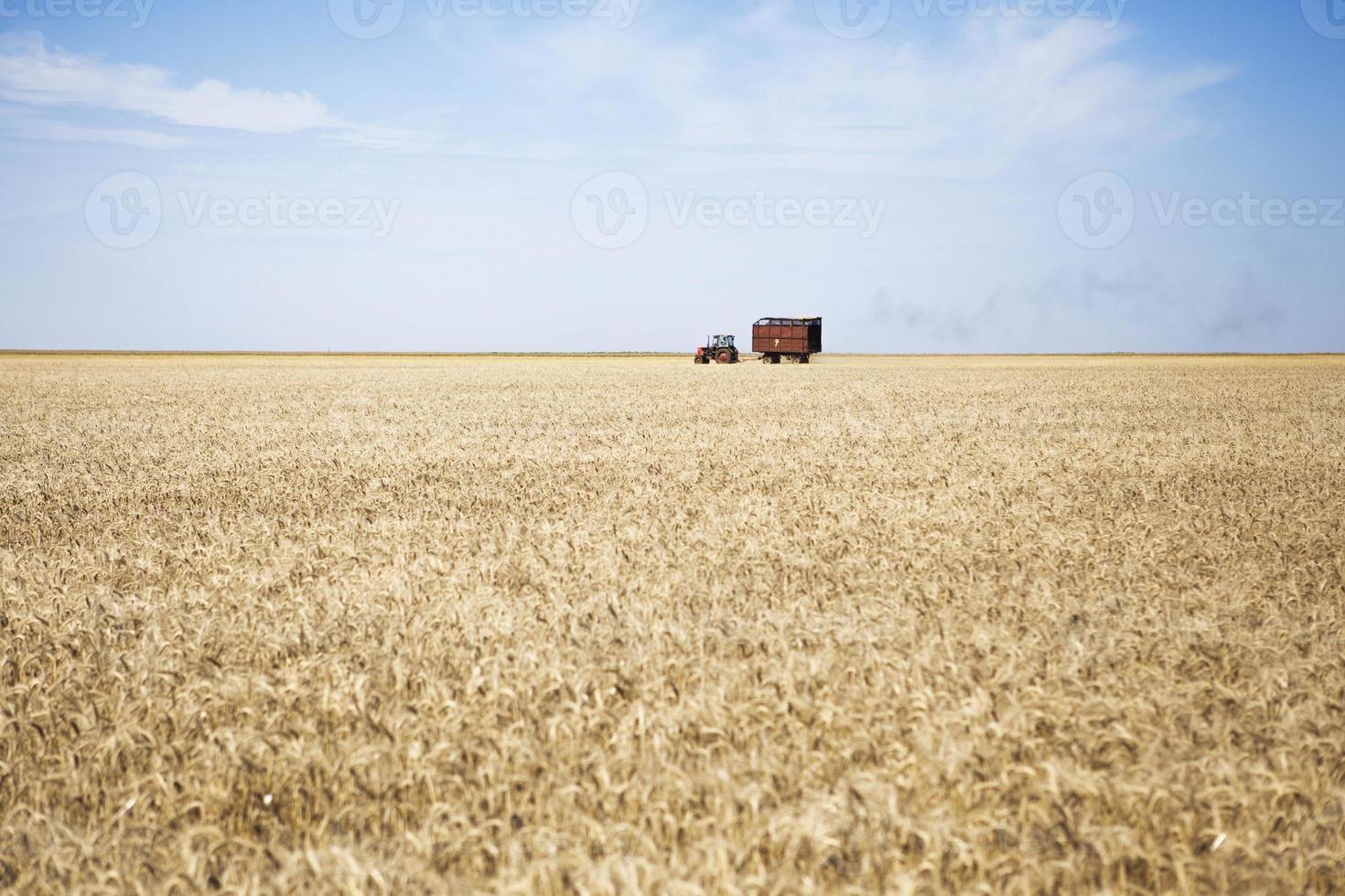 tracteur photo
