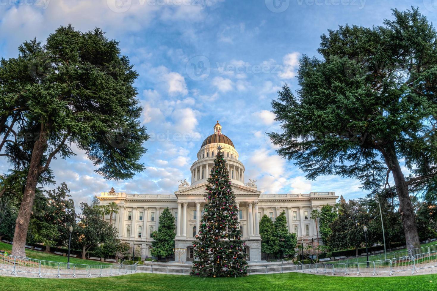 Large ange vue de l'arbre de Noël de l'état de Californie photo