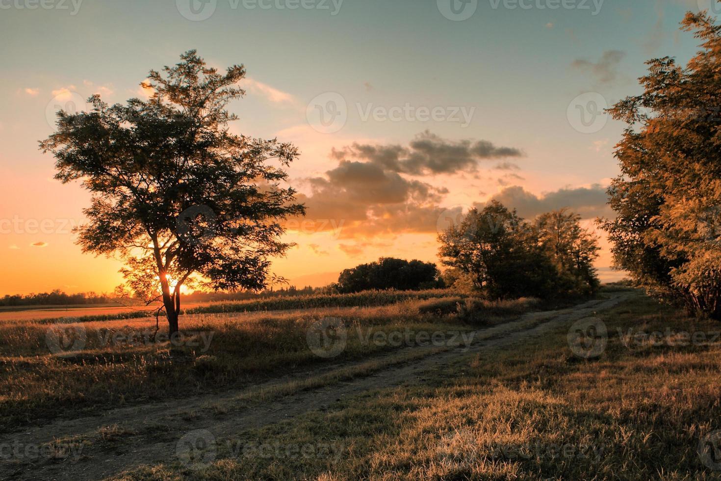 scène de coucher de soleil d'été photo