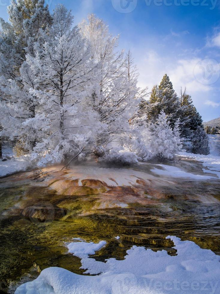 neige fraîche, canaris, sources chaudes de mammouth photo