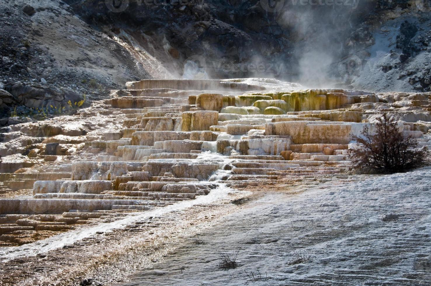 sources chaudes de mammouth, parc national de yellowstone, usa photo