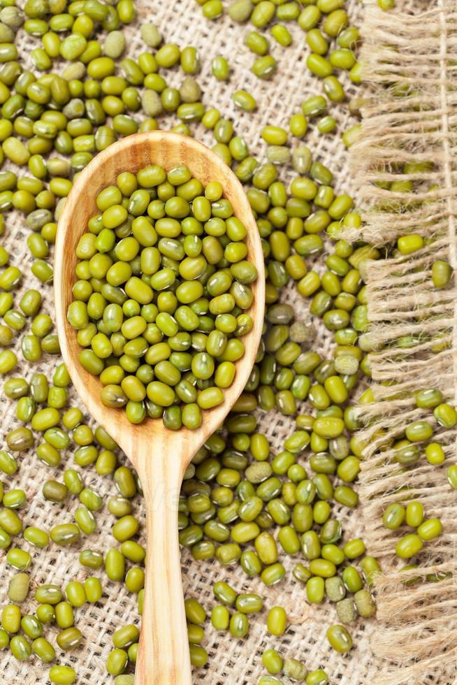 haricots mungo organiques crus verts de nutrition saine dans une cuillère en bois photo