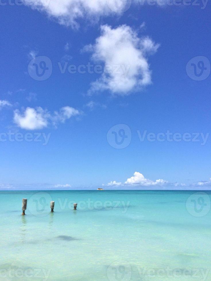 paysage tropical photo