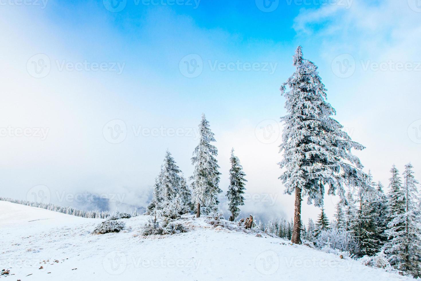 magnifique paysage d'hiver photo