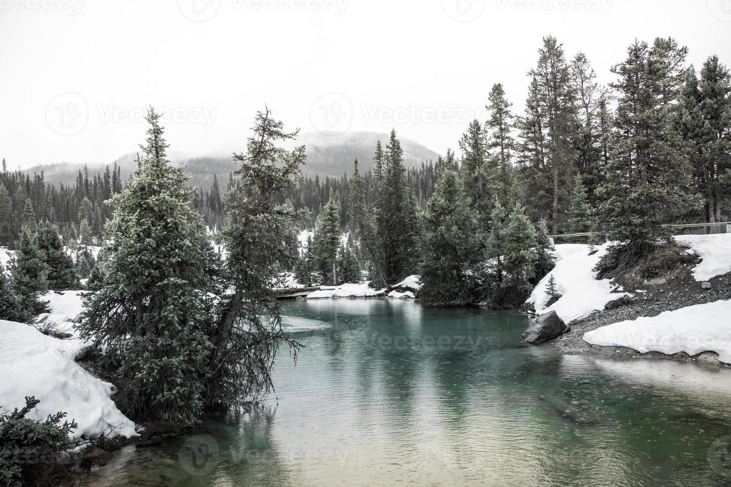 paysage de ruisseau de montagne en hiver photo