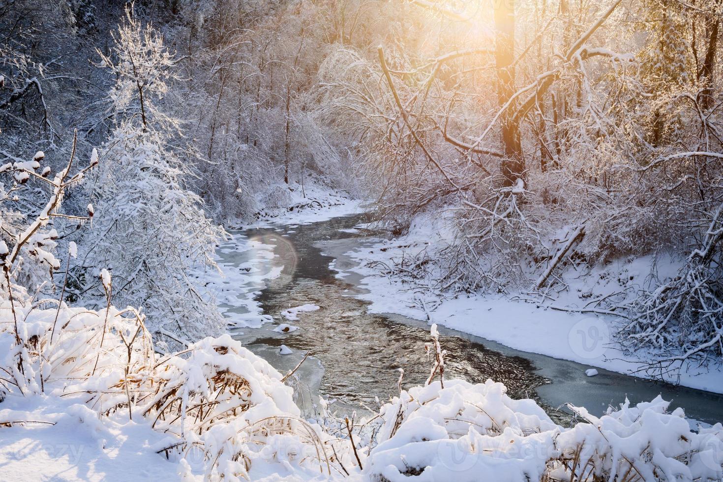 ruisseau forestier après la tempête hivernale photo