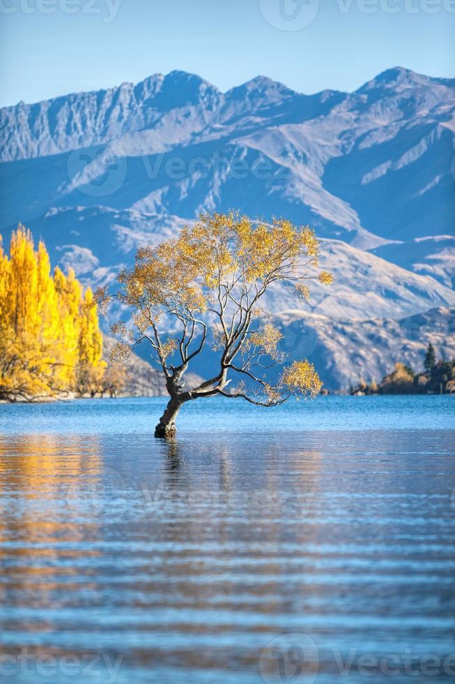 lac wanaka photo