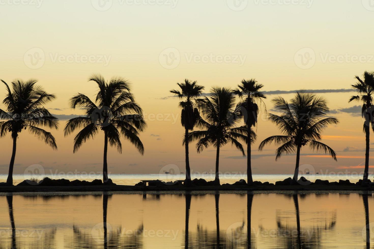 lever du soleil à miami photo