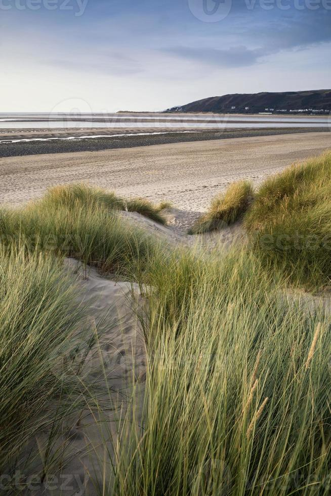 Vue paysage d'été sur les dunes de sable herbeuses sur la plage photo