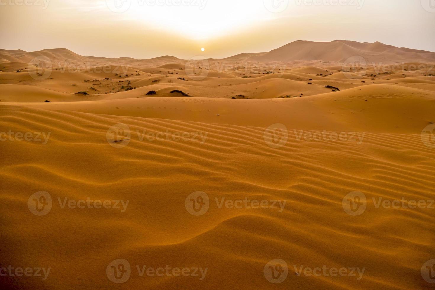 Dunes de sable à Merzouga, Maroc photo