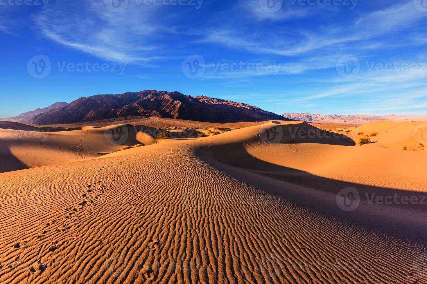 matin ensoleillé dans la vallée de la mort photo