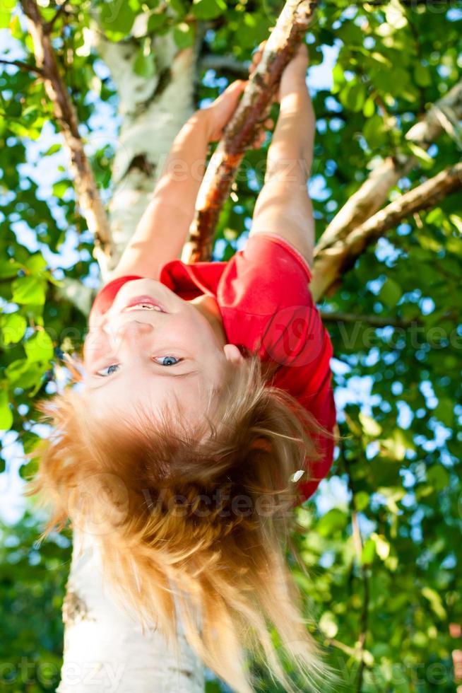 enfant suspendu à une branche d'arbre photo