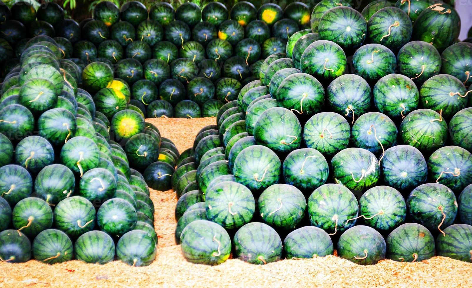 groupe de melon d'eau à vendre photo