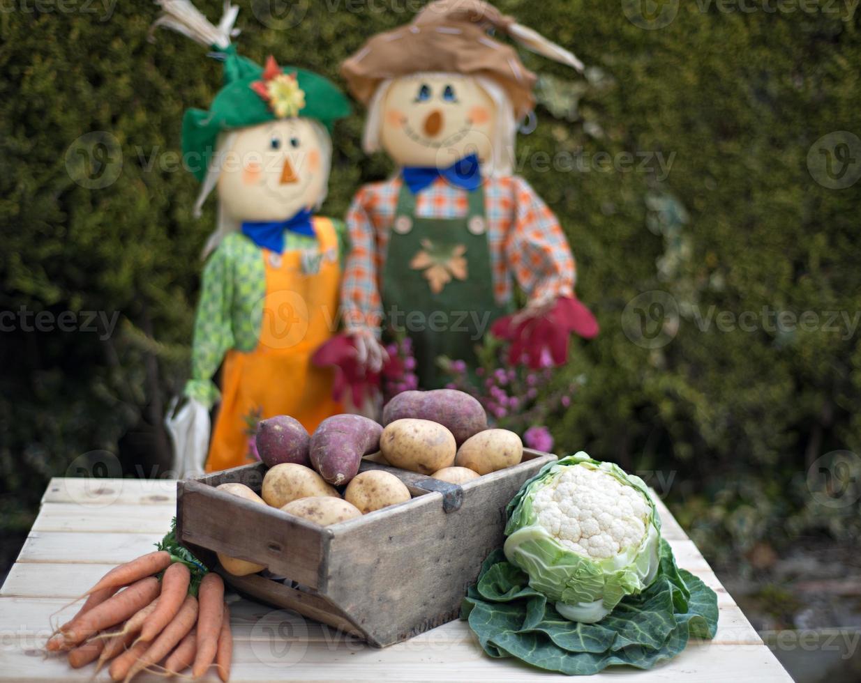 épouvantails et légumes du jardin photo