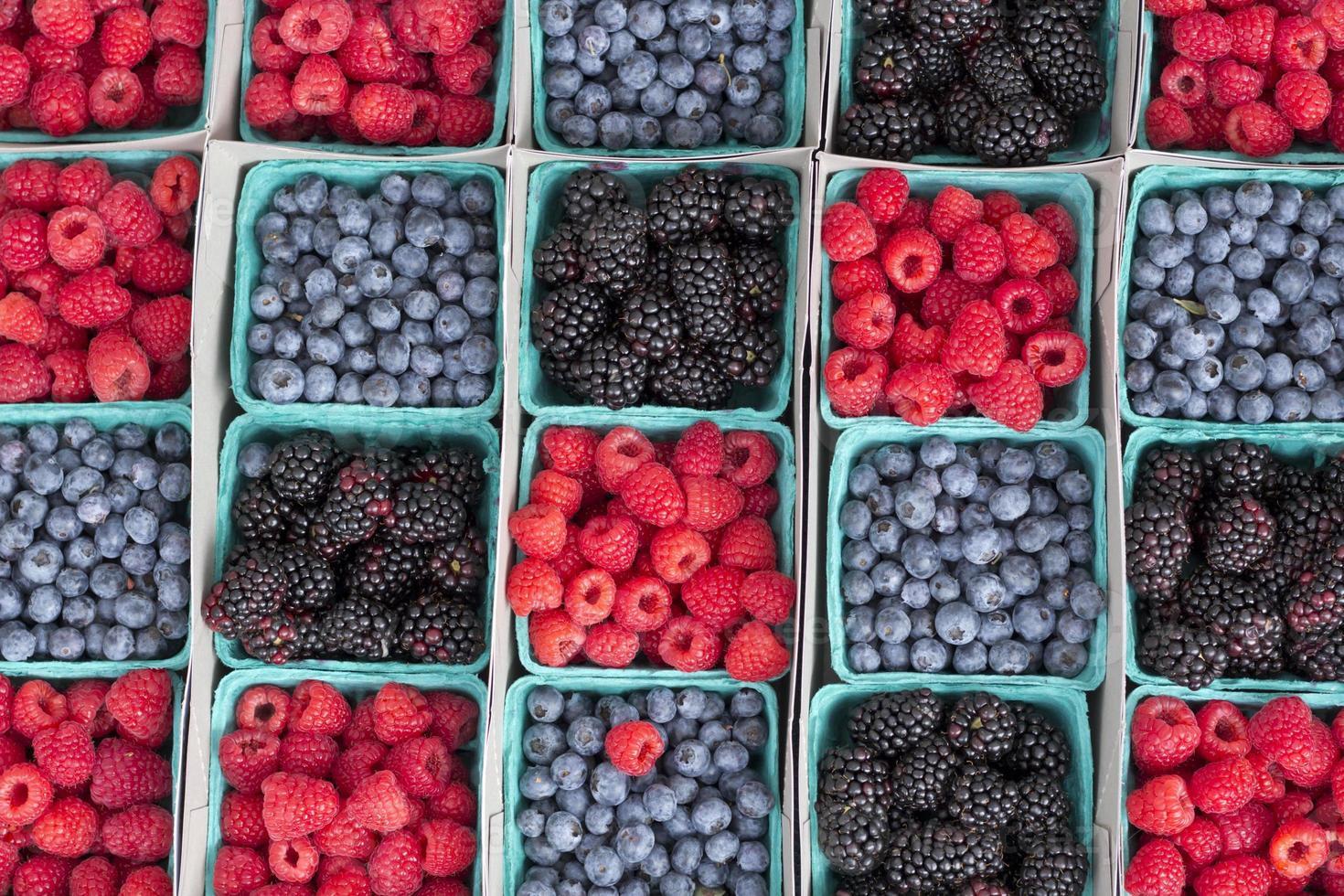 fraises myrtilles mûres photo
