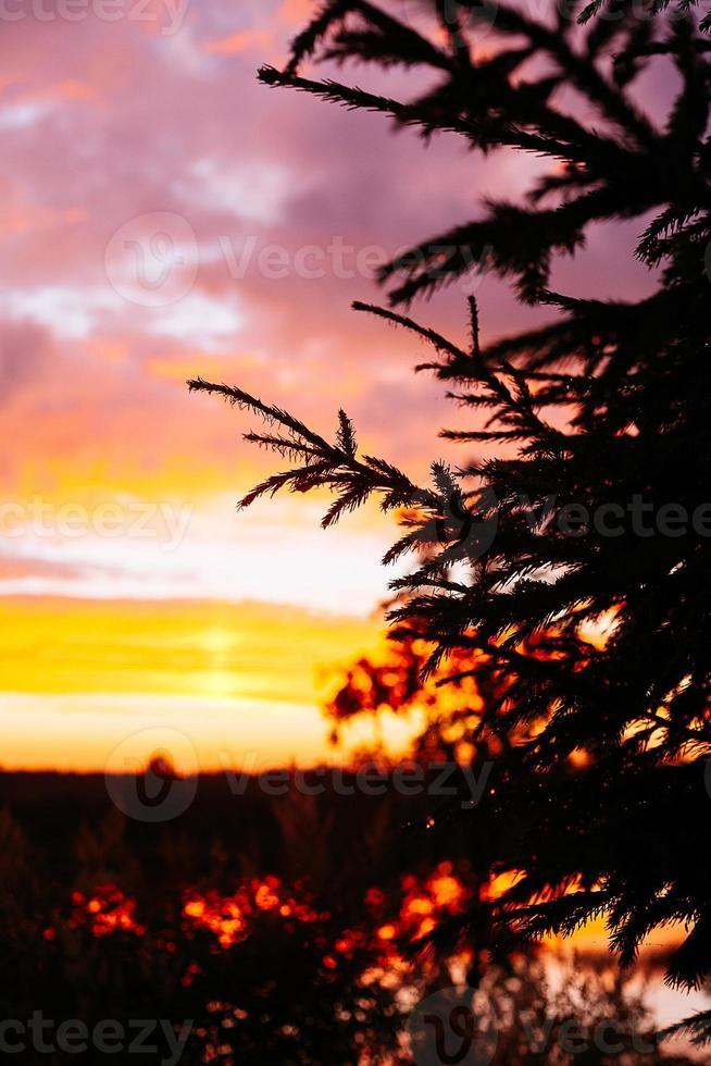 coucher de soleil sur la rivière photo