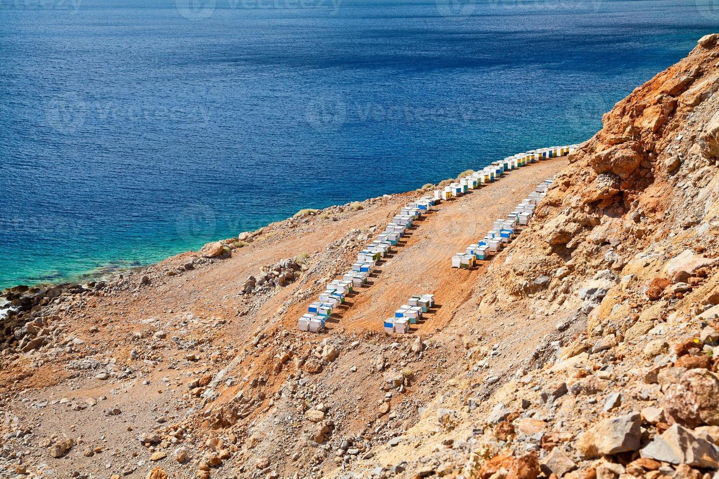 jardin apicole près de la mer Méditerranée photo