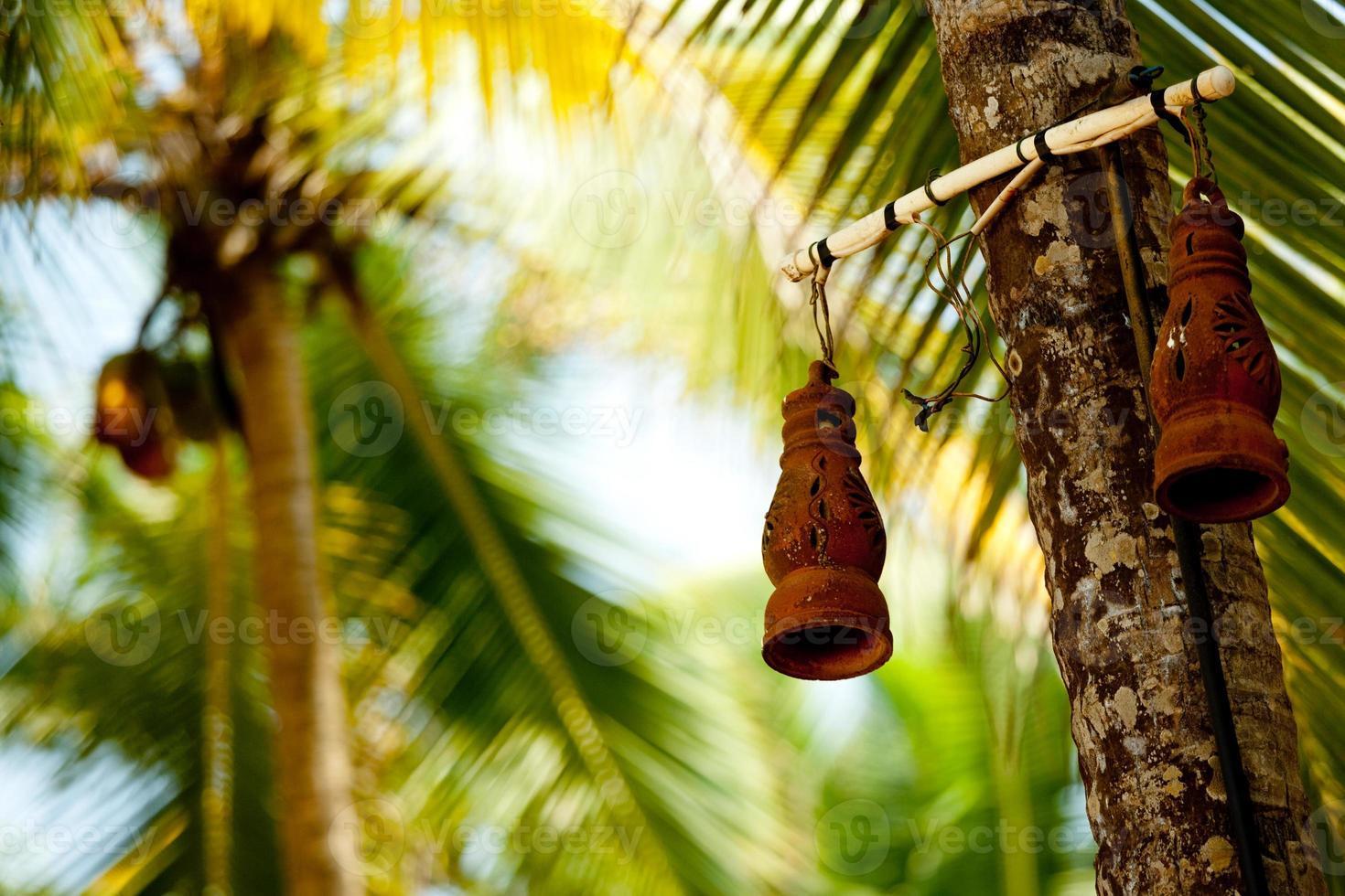 lampe en argile et palmier photo