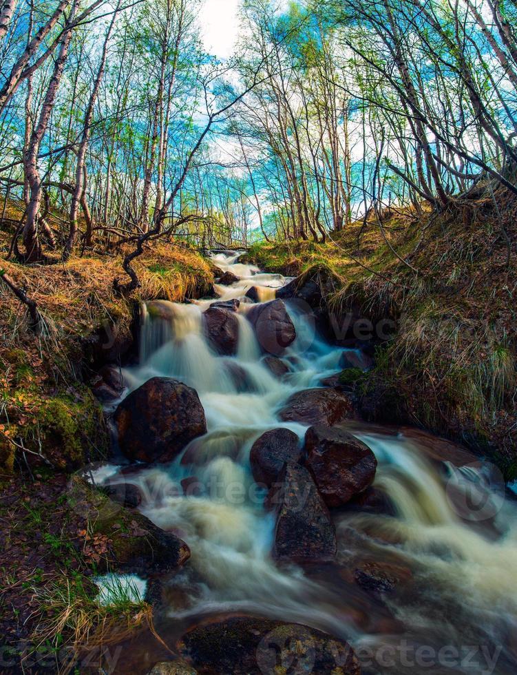 cascade de printemps photo