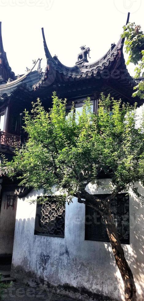 entrée de la rue de la ferme de thé, thé vert, porte, traditionnel, agriculteurs, village. photo