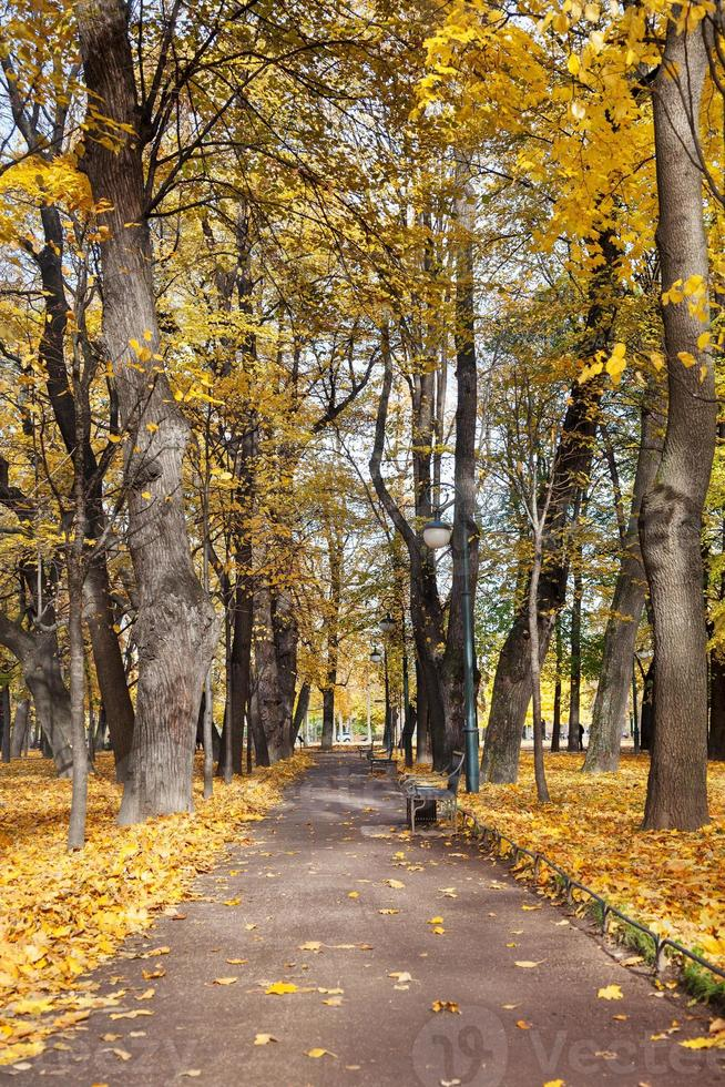 jardin Michael. Saint-Pétersbourg. Russie photo