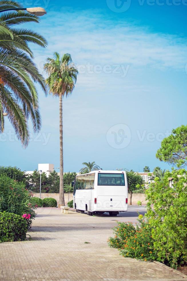 autobus. photo
