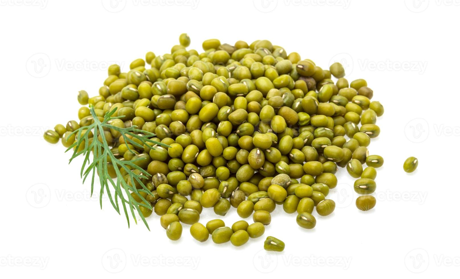 haricots verts secs photo