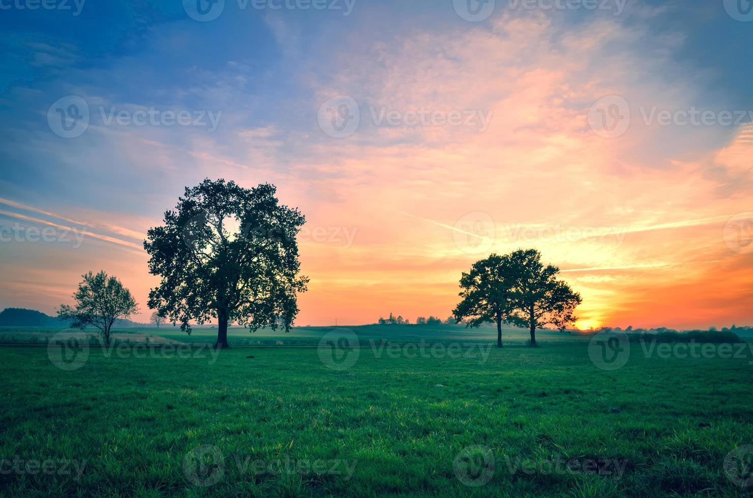 paysage d'automne. photo