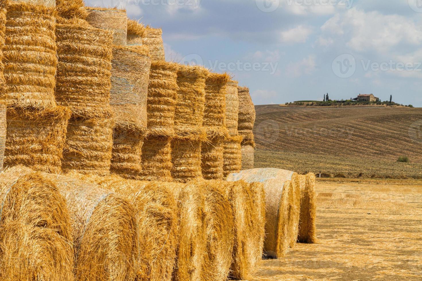 paysage toscan photo