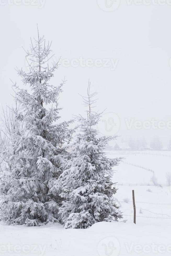 paysage d'hiver fantastique photo