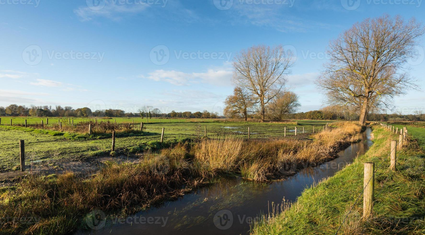 paysage néerlandais pittoresque photo