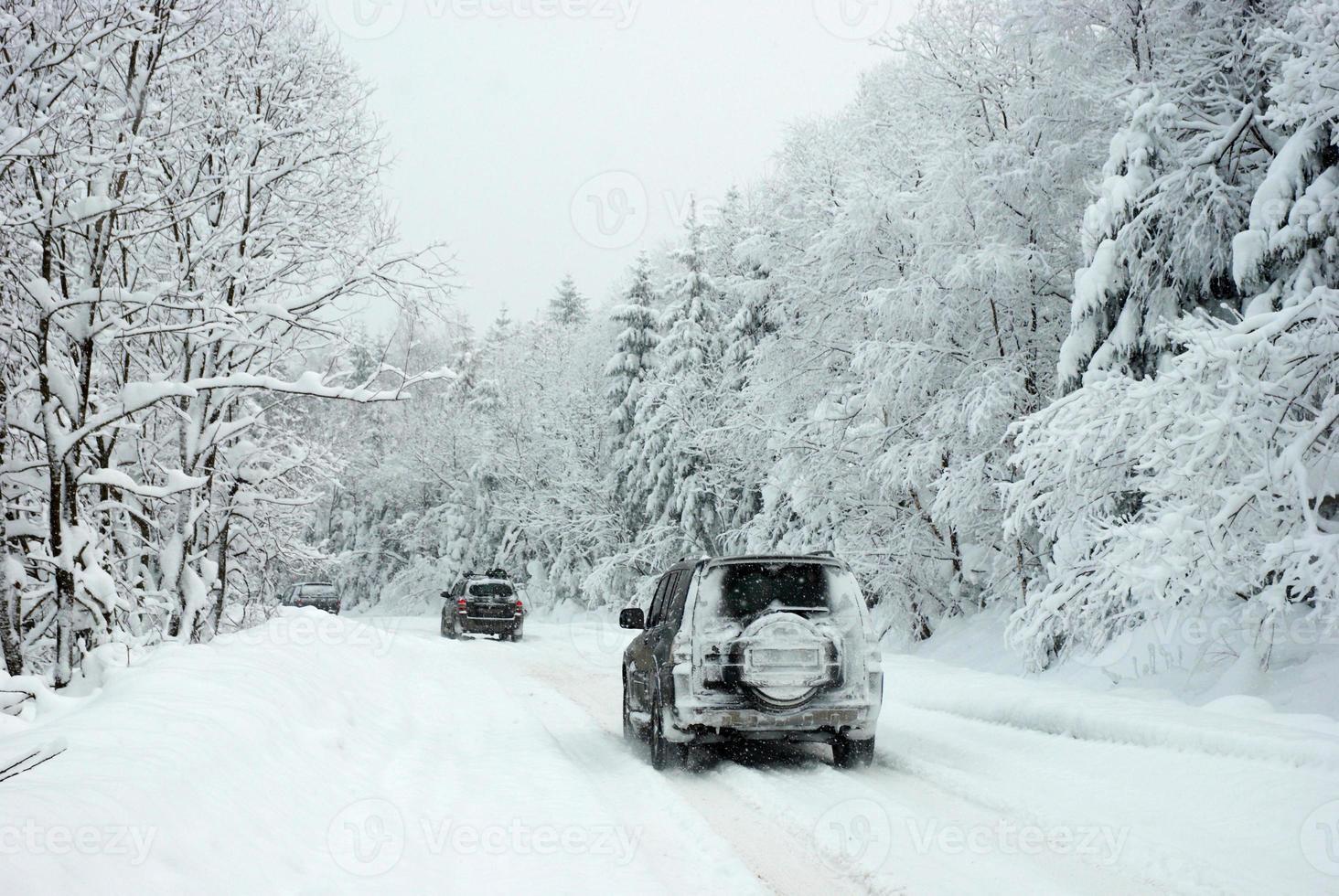 rallye d'hiver photo