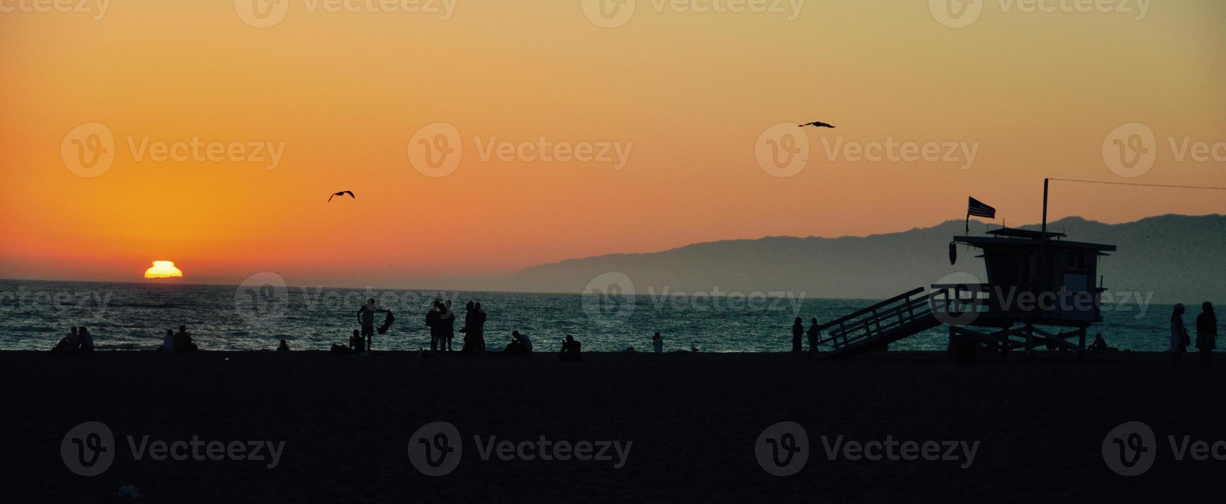 les oiseaux volent au coucher du soleil photo