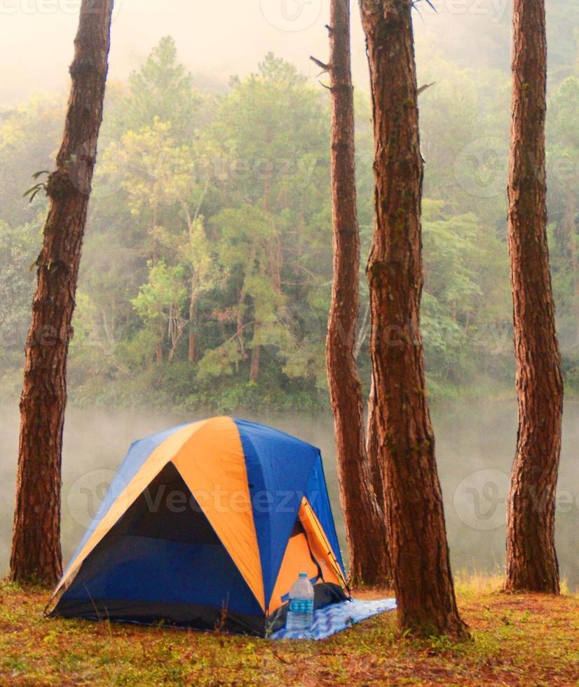 camping dans la forêt photo