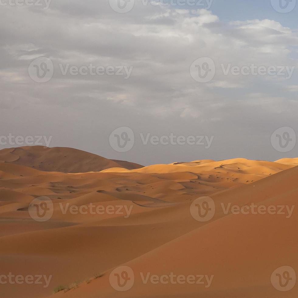erg chebbi au maroc photo