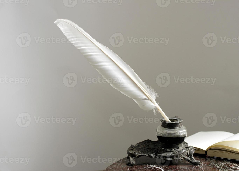 plume d'oie photo