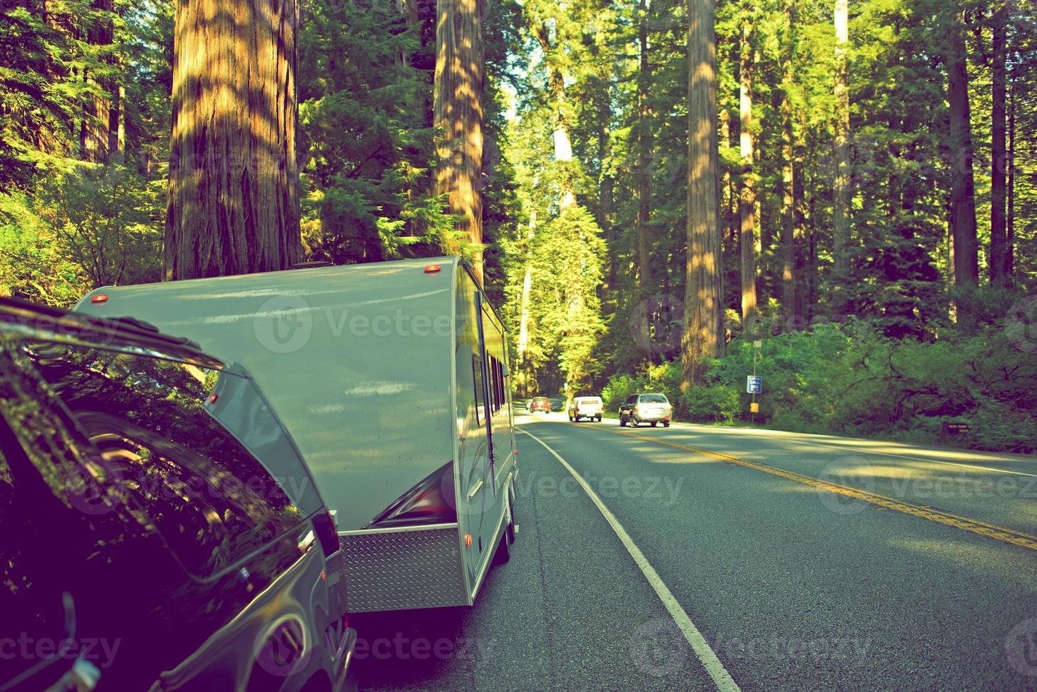 camping-car dans la forêt de séquoias photo