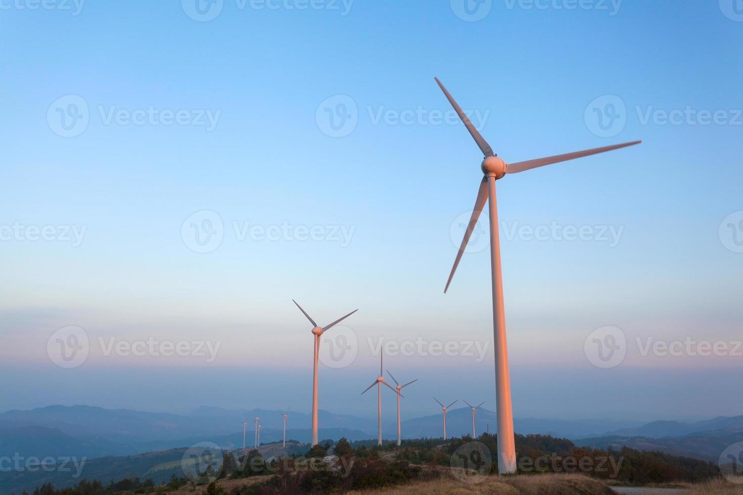 parc éolien photo