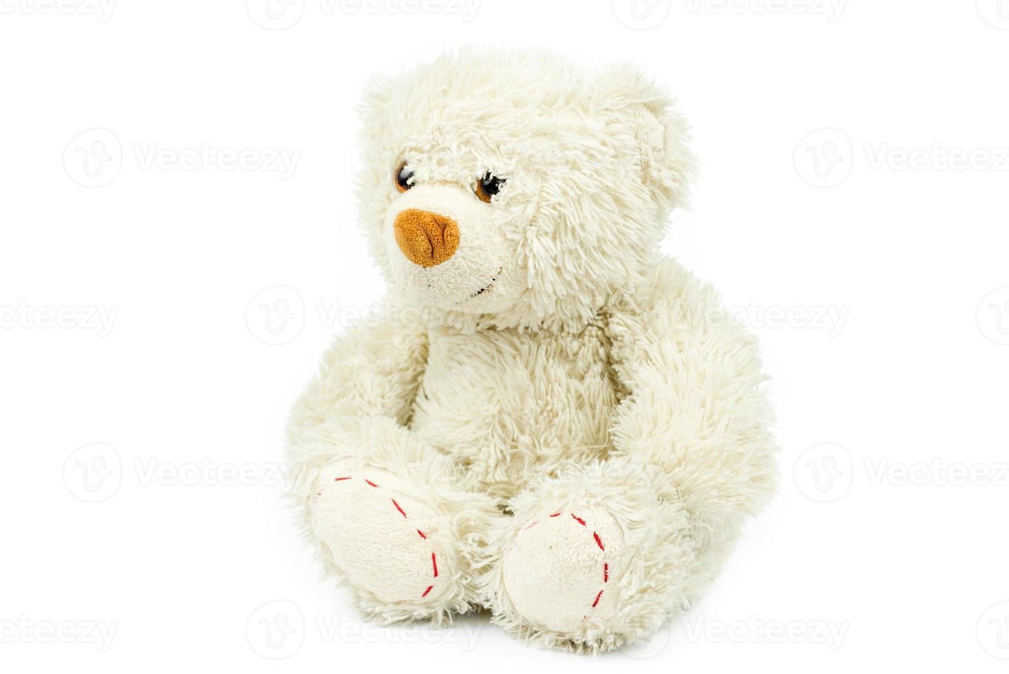 mignon petit ours photo