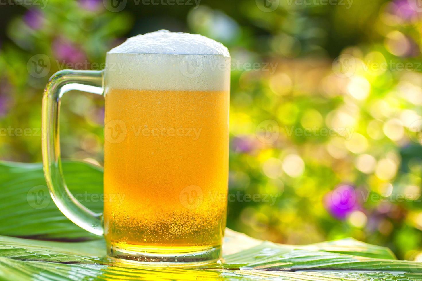 verre de bière photo