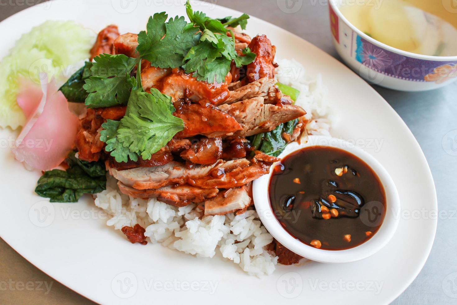 riz au canard rôti photo