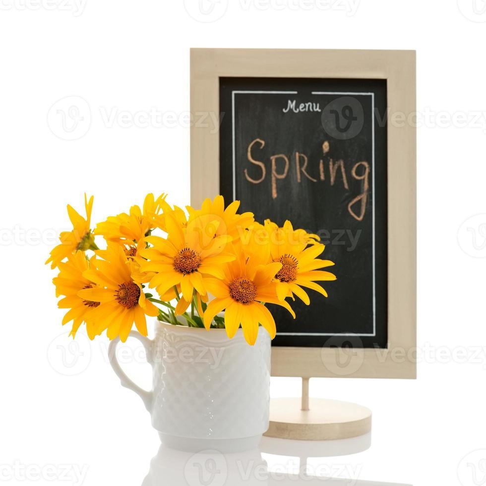 concept de menu de printemps photo
