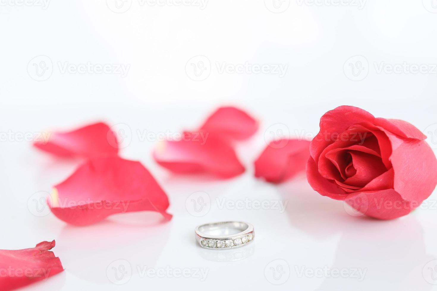 rose rouge avec anneau photo