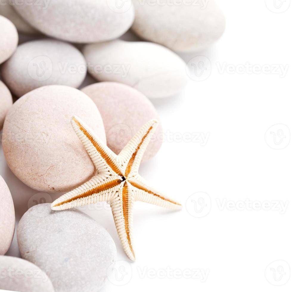 tas de pierres et étoile de mer photo