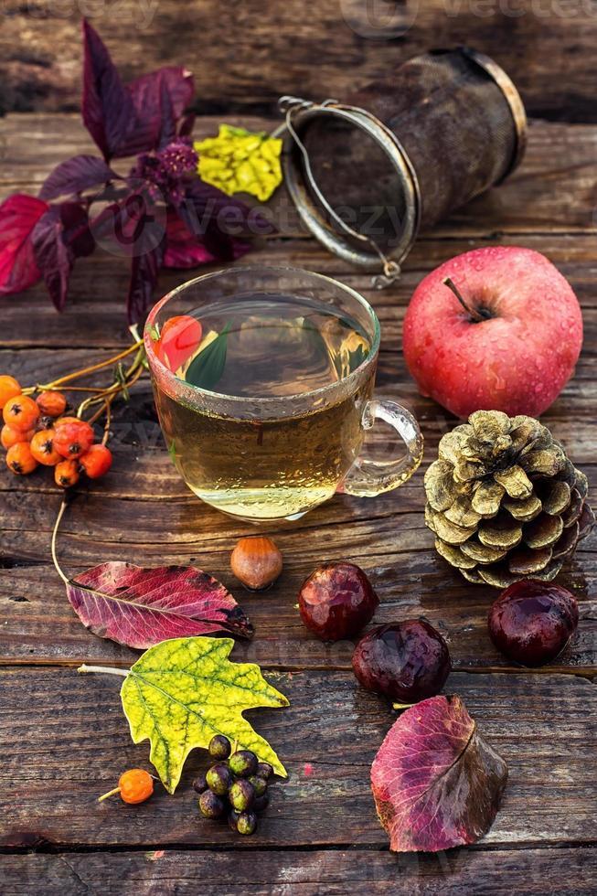 thé d'automne photo