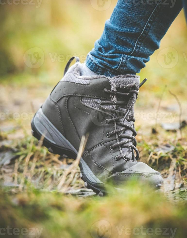 chaussures dans une forêt photo